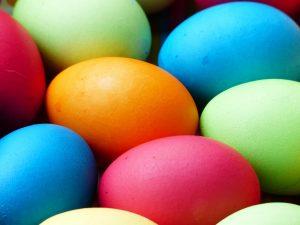 egg-100165_1280