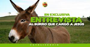 entrevista al burro que cargo a jesus