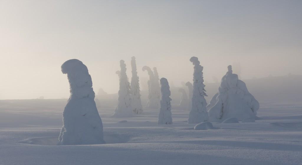 005 Centinelas del Ártico