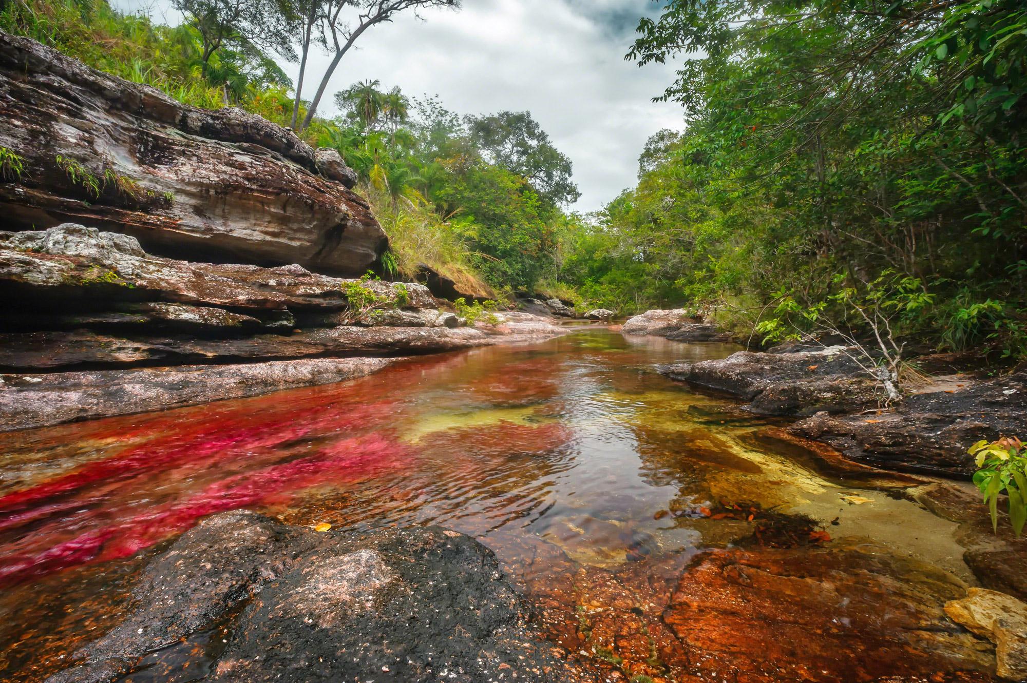 Cano-Cristales-el-rio-de-colores-en-La-Macarena-Meta
