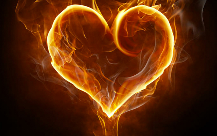 fuego amor
