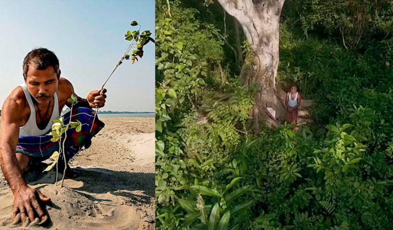 Joven planta árboles durante 40 años en una isla y actualmente tiene más que Central Park