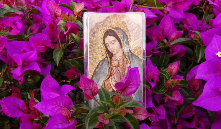Conoce estos 6 Lugares dedicados a la Virgen de Guadalupe