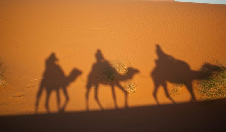 7 Datos que quizá no conocías sobre los Reyes Magos