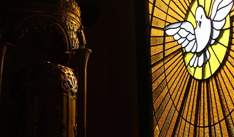 Santísima Trinidad: Una comunidad de amor